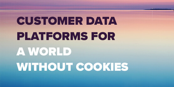 Customer Data Platforms for a World Without Cookies