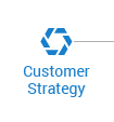 Learn more about Customer Strategy